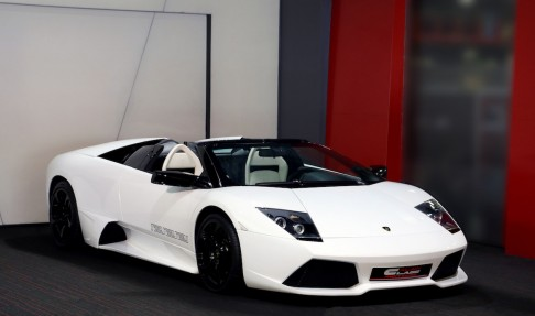 LAMBORGHINI Murcielago Lp640 Roadster Versace Limited Edition 1 of 20